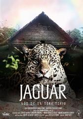 Jaguar voice of a territory